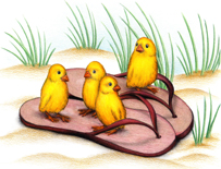 Chicks in Thongs (card)